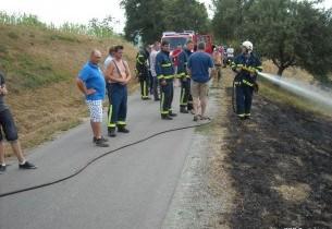 Požar travnika Sotina